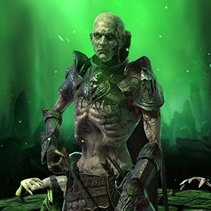 Hollow guide raid