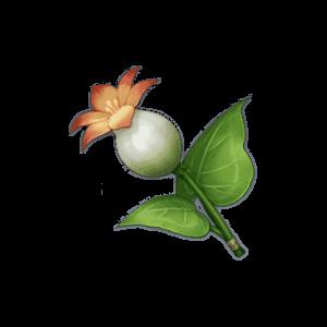 Calla Lily - Genshin Impact - Guide