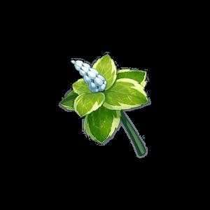 Мята - Genshin Impact - Гайд по игре