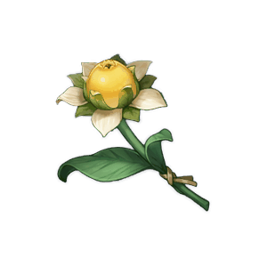 Sweet Flower - Genshin Impact - Guide