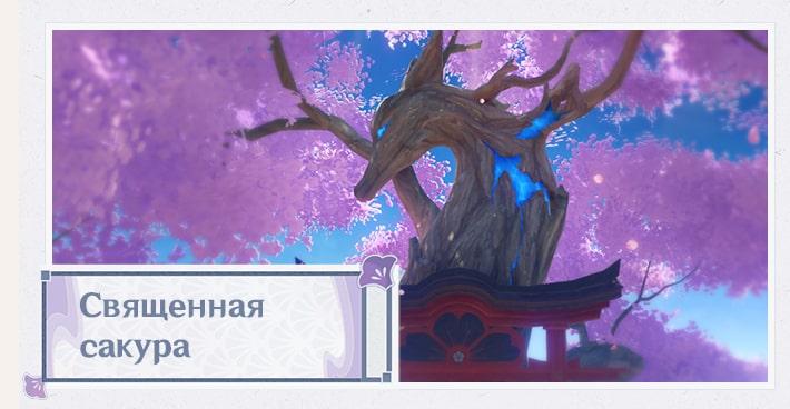 Священная сакура в Инадзуме в Genshin Impact